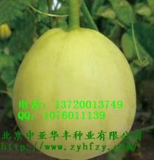 优质高产甜瓜种子