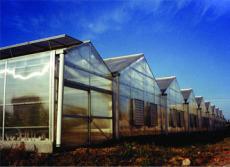 PC板连栋温室大棚建造标准/PC板连栋温室大棚设计安装