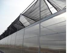 金诺温室工程制品供应樱桃大棚建设 温室大棚建设厂家