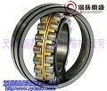 鋼鐵企業信得過軸承/德國FAG進口調心滾子軸承