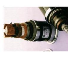 安徽亨利变频电缆-变频电缆价格优惠-变频电缆特别推荐
