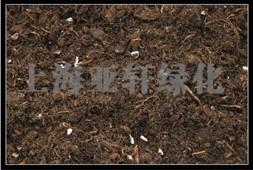 营养土 屋顶绿化营养土 泥炭批发