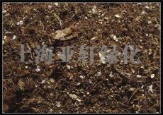 屋頂花園種植土 屋頂綠化泥炭土 草炭土