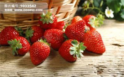 无公害草莓
