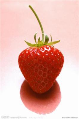 上海奶油草莓