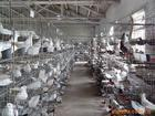中國肉鴿產業分析與投資前景預測報告