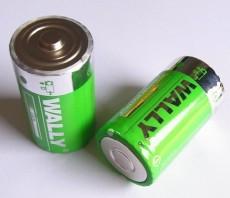 LR20 1號 大號 D型AM1 1.5V 堿性干電池