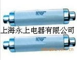 供应XRNP系列电压互感器保护用熔断