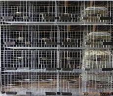 鸽笼鸡笼兔笼等养殖用笼