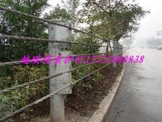 河北缆索护栏 8钢丝绳护栏实体厂家