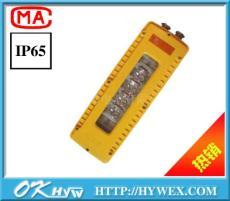 熱銷產品DGS10/127L A 礦用隔爆型LED巷道燈