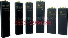 淄博供应火炬蓄电池 火炬牌蓄电池组 厂家发货 批发零售