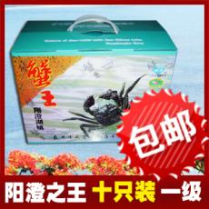 北京正宗陽澄湖大閘蟹禮盒10只裝一級
