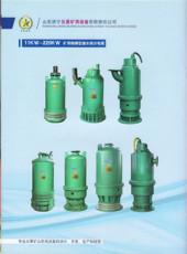 济宁五星矿用设备有限责任公司 BQS排沙泵 B