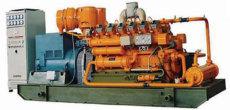 沼氣發電/沼氣發電機/發電設備/發電機