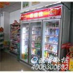 深圳哪里有冰柜賣 長沙便利店冰柜 湖南商用冰柜定做