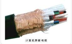 DJFP2FP计算机电缆 DJFP2FP耐高温计算机电缆